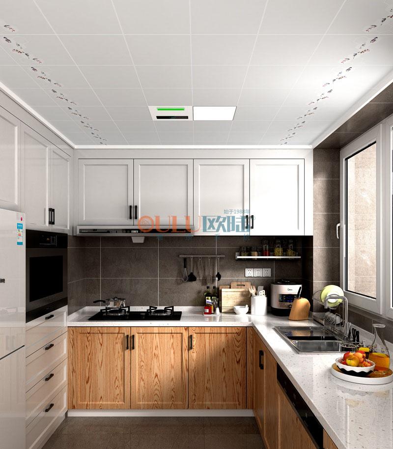 君子之家 负离子抗菌吊顶 厨房吊顶-全屋整装厨房吊顶效果图